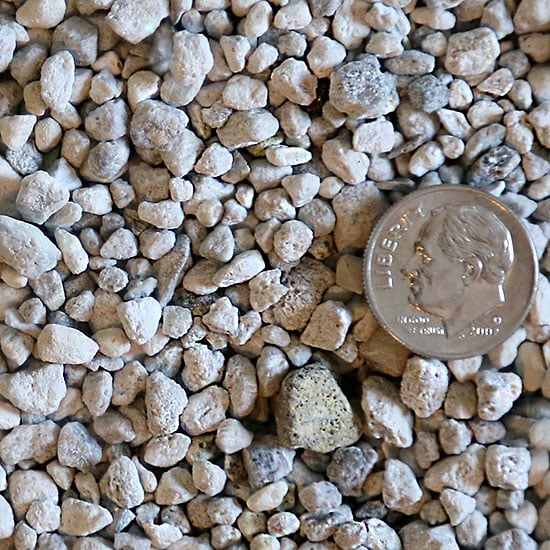 The Pumice Store Pumice Stone For Succulent And Cactus Soil